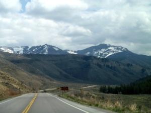 Caribou-WyomingMountainDrive