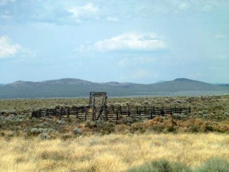Corral-Livestock