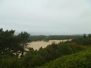 LakeMarie-Dunes