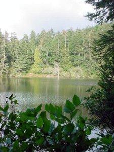 LakeMarie-GreenHikin