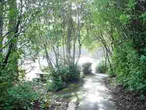 LakeMarie-TrailAroundLake
