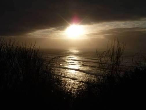 Beaches-SeaGrassSunsetOcean
