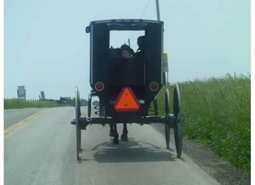 AmishBoyInWagonWindow