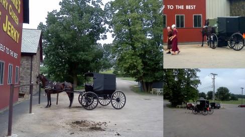 AmishParked
