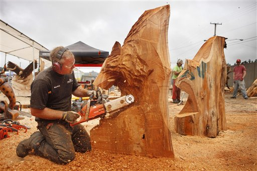 Bob King from Edgewood, Wash., carves a bear during the quick carve event on the final day of the 13th annual Oregon Divisional Chainsaw Sculpting Championships in Reedsport, Ore. King also traveled to Mulda, Germany recently to compete in the wood carving world cup. (AP Photo/The World, Benjamin Brayfield) STANDALONE PHOTO