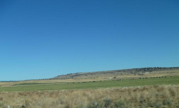 Oregon-Crops&Cattle