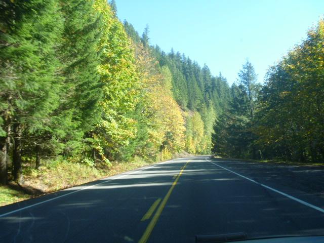 Oregon-FallColorsMakenzieRiverValley