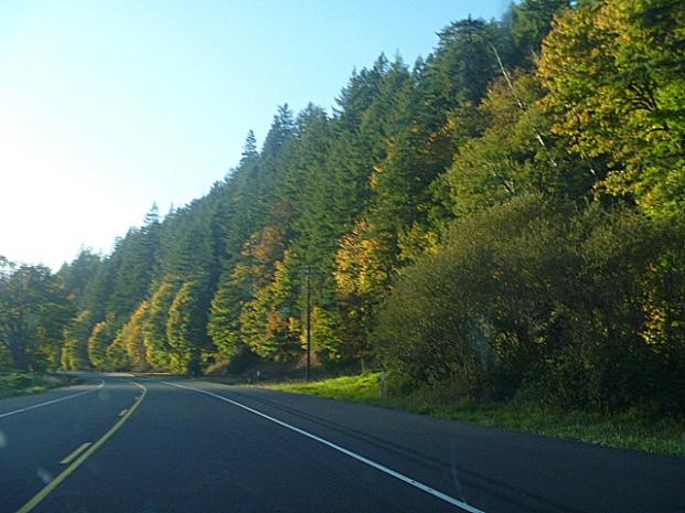 Oregon-SiuslawRiverValleFallColors