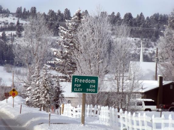 freedomsigna